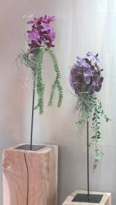floristik_1